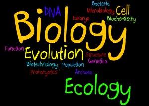 biology_wordle_low